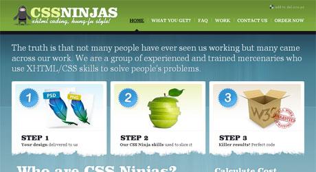 cssninjas 40 Beautiful PSD Slicing Websites